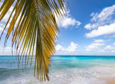 Mambo Beach, Curaçao.